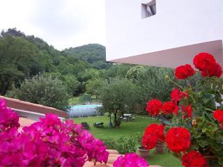 Casa Petunia - Red - Massarosa vacation rentals