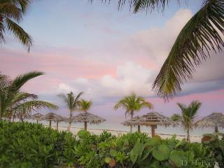 Near Port Lucaya  1503 Coral Beach Tropical Oasis - Grand Bahama vacation rentals