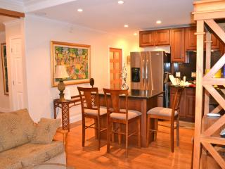 Pohailani Maui-Modern 2 bedroom condo in West Maui - Lahaina vacation rentals
