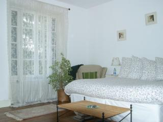 Burgundy Region Bed and Breakfast - Arcy-sur-Cure vacation rentals