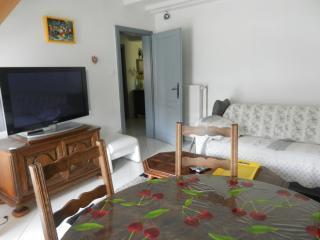 Appartement + Jardin COLMAR - Horbourg Wihr vacation rentals