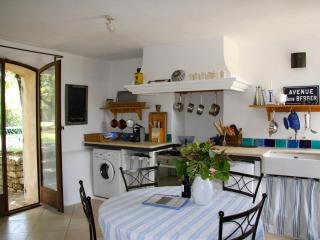 Restored farmhouse at lavender fields with pool - Saignon vacation rentals