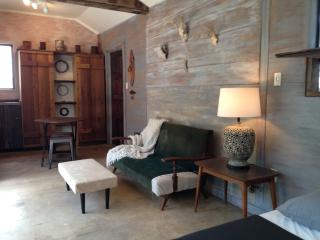 The Cabin at 9055 - Boerne vacation rentals