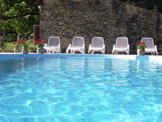 SARLAT-16thC STONE HOUSE 3BD+3BTH+HEATED POOL+WIFI - Sarlat-la-Canéda vacation rentals