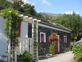 Four Directions Cottage - Castletownbere vacation rentals