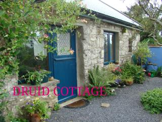 Druid Cottage - Tulla vacation rentals
