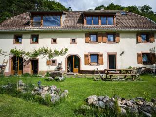 La Pierre d'Eau - Freland vacation rentals