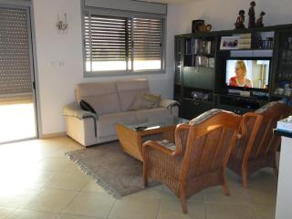 Apartment in the centre of Israel - Israel vacation rentals