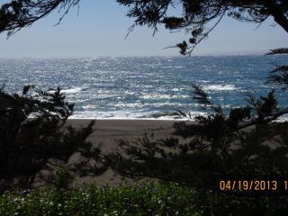 Sonoma Coast Ocean Front Property - Duncans Mills vacation rentals