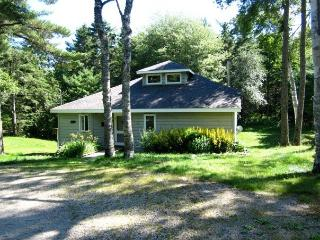 Hidden Gem in the Heart of Chester - Chester vacation rentals