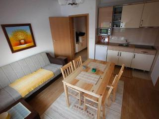 Apartment Milica in Banja Koviljaca - Bajina Basta vacation rentals