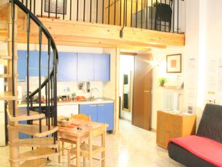 Large open space, center town! - Bologna vacation rentals