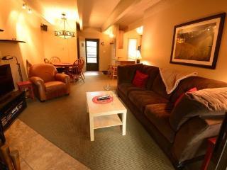 215C Ten Mile Island  2BR 2BA - Frisco - Frisco vacation rentals