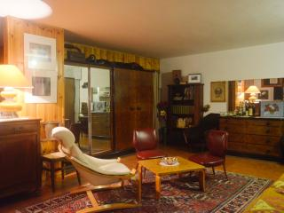 Cosy Open space in  Alba - Langhe - Adsl inside - Alba vacation rentals