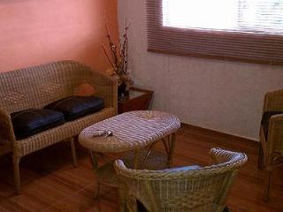 Precioso departamento amueblado en Guanajuato Capital - Guanajuato vacation rentals