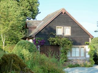 Llys Hendy Cottage - Welshpool vacation rentals