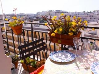 Ferrie Apartment Rental with Great Views from the Balcony - Cannes vacation rentals