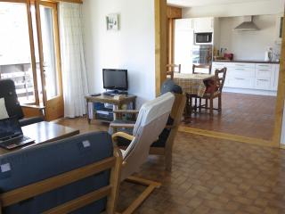 Large sunny apartment, great views, pool,410km ski - Vaud vacation rentals