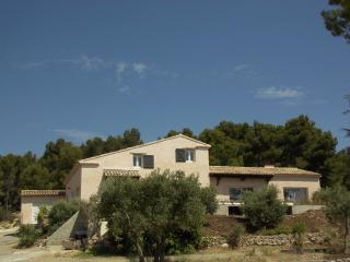 maison et chambres d'hôtes au milieu des oliviers - Mouries vacation rentals