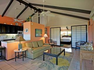 Intl Colony Club #43 - Lahaina vacation rentals