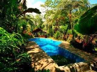 Wonderful Film Set in the Jungle - Province of Alajuela vacation rentals