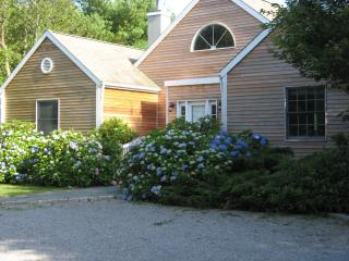 Bridgehampton South, Village Gem! - East Marion vacation rentals