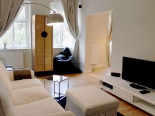 Comfortable and Nice Apartment in Boxhagener in Berlin - Berlin vacation rentals