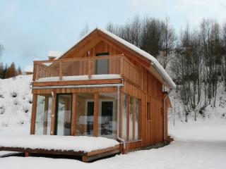 Ski and Sun Mountain retreat - Stadl an der Mur vacation rentals