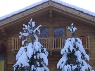 Chalet Alpina 1 bedroom apartment - Pre-Saint-Didier vacation rentals