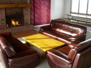 6 Bedroom Chalet / Outdoor Hot Tub 52L #149 - Ontario vacation rentals