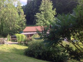 Lovely cottage, surrounded by nature - Ambert vacation rentals