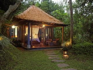 Rustic Luxury : Villa Shanti - Ubud vacation rentals
