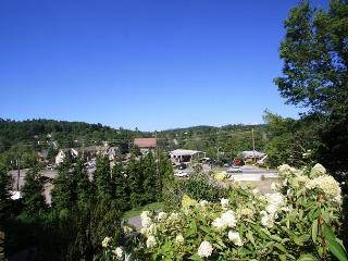 Village Cottage an adorable in town cottage just minutes from Main Street - Blowing Rock vacation rentals