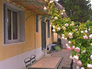 Country House nearby Mt.Ventoux with large garden - Carpentras vacation rentals
