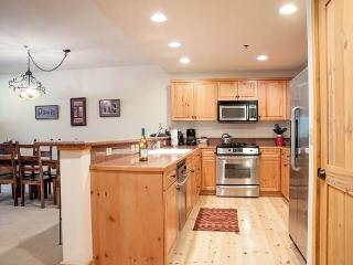 Bear Creek Lodge 108 - Mountain Village vacation rentals
