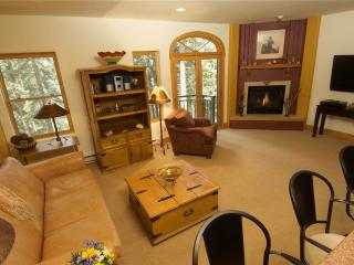 Bear Creek Lodge 205 - Mountain Village vacation rentals