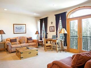 Bear Creek Lodge 209 - Mountain Village vacation rentals