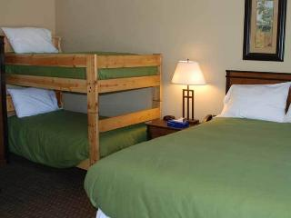 Backcountry Inn 108 - Norwood vacation rentals