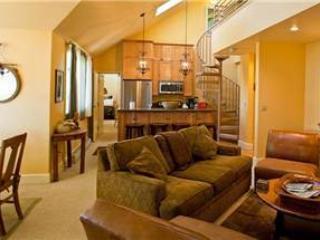 Blue Mesa Lodge #40 - Telluride vacation rentals