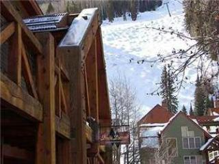Double Diamond #6 - Telluride vacation rentals