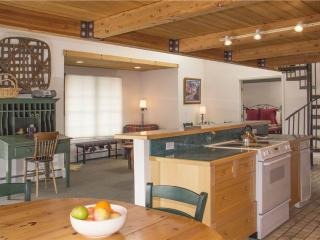 Mountainside Inn #101 - Telluride vacation rentals