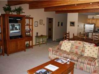 Riverside Condos #D03 - Telluride vacation rentals