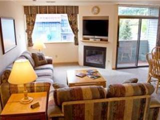 Telluride Lodge #512 - Image 1 - Telluride - rentals