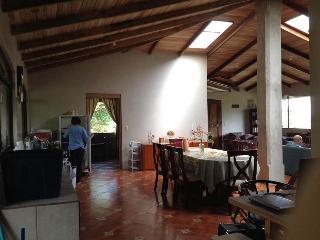 High Peace Mountain House - San Ramon vacation rentals