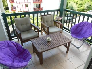 Bidart - Bidart vacation rentals