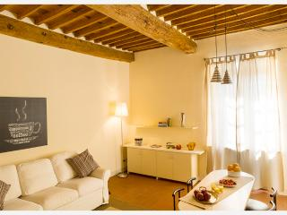 Spacious flat in front of the Town Walls - Lucca vacation rentals