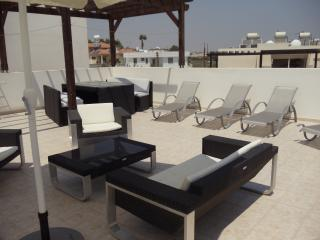 2 Bed Penthouse On Elysian Fields - Tersefanou vacation rentals