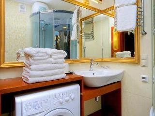 Torch 1 bedroom Apartment - Kiev vacation rentals
