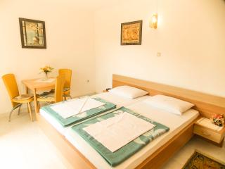 Edina E. - 93 - studio apartment for 2 persons - Medveja vacation rentals