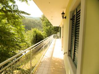Edina E. - 101 - studio apartment for 2 persons - Medveja vacation rentals